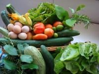 prodotti del orto